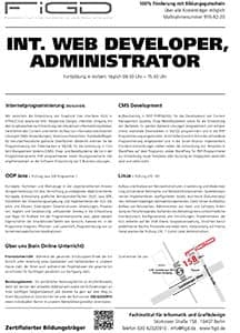 FiGD int web developer administrator Info300 - Web Developer - Administrator